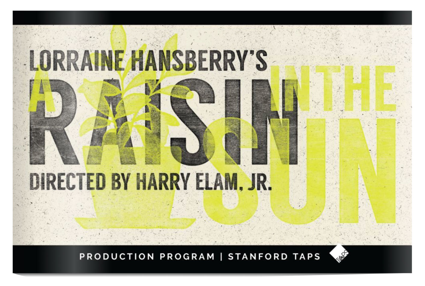 A Raisin in the Sun Program Cover